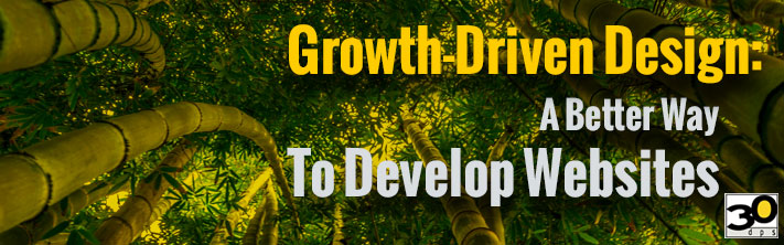 Growth-Driven Design: A Better Way to Develop Websites